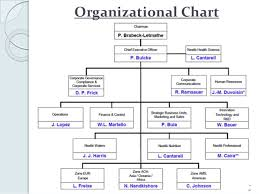 Executive Hierarchy Chart Managerial Hierarchy Of Nestle