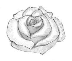 Fiori Facili Da Disegnare Sfumature E Punti Di Luce Petali Di Rosa