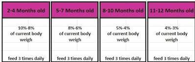 Raw Feeding Chart For Puppies Transitioning To Raw Dog Food Ladas Raw And Natural Dog Food