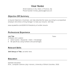 Basic Resume Sample – Goodvibesbrew.com