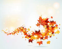 Image result for autumn leaves photos free