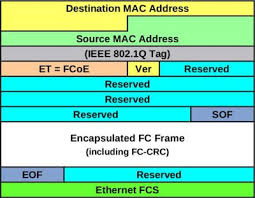 ethernet frame format reserved multiple