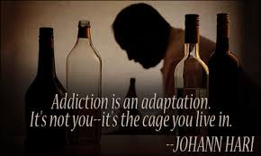 Quotes About Loving An Addict Magnificent Addiction Quotes