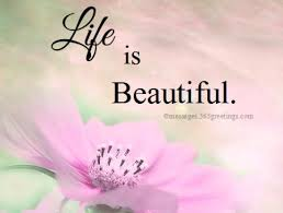 Beautiful Quotes On Life Fascinating Life Is Beautiful Quotes And Sayings 48greetings