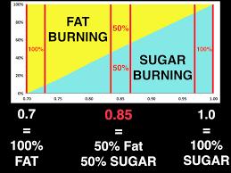 Cutting Edge Testing Metabolic Performance