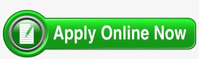 For More Information About This Position Contact Lead - Apply Now Button Green PNG Image | Transparent PNG Free Download on SeekPNG