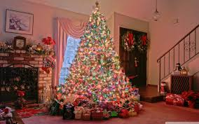 ... Remarkable Pretty Christmas Trees Tittle ...