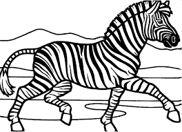 You know, that zebra is a special horse which you can color no any colors. Free Zebra Coloring Pages