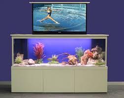 furniture aquarium. Aquarium Furniture Ideas, DIY, Design, Inspiration, Old Tv, IPad, Modern
