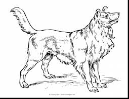 superb dog coloring pages to color with cute puppy coloring pages ...