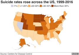 Why Us Suicide Rate Is On The Rise Bbc News