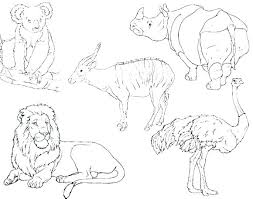 Desert Animal Coloring Pages Desert Coloring Pages Coloring Pages