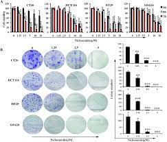 Niclosamide induces colorectal cancer apoptosis, impairs metastasis and  reduces immunosuppressive cells in vivo - RSC Advances (RSC Publishing)