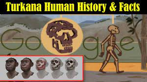 Who is Turkana Human? - Complete Early ...