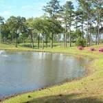 Springview Country Club in Roseland, Louisiana, USA | Golf Advisor