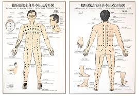Shiatsu Tsubo Chart Namikoshi Shiatsu Shiatsu History