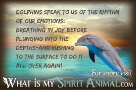 Dolphin Quotes Sayings Animal Quotes Sayings