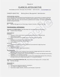Azw Descargar Download 55 Executive Resume Template Sample Free