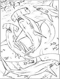 Small Picture Shark Coloring Pages Coloring Coloring Pages