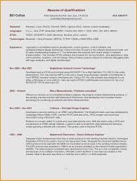 Sample Resume Format For Banking Sector Awesome Ceo Cv Resumes