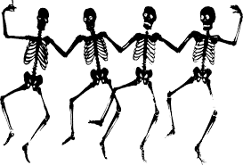 Image result for free pics of human bones