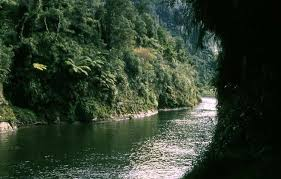 Image result for whanganui river