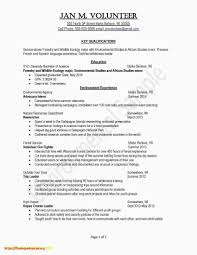 Sample Ppicture Of A Simple Resume Valid How To Write A Professional