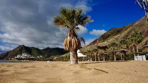 Image result for imagini frumoase cu palmieri