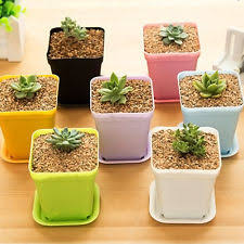 office flower pots. 7pcs Mini Plastic Plant Flower Pot Home Office Decoration Nursery Garden Pots