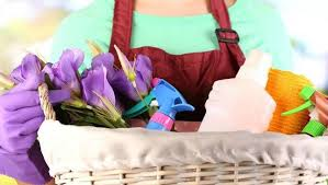 Image result for image of spring cleaning