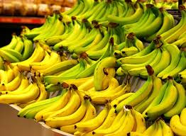 The Journey Of One Banana A Supply Chain In Motion