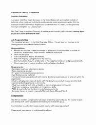 Excel P L Template Business Process Description Checklist