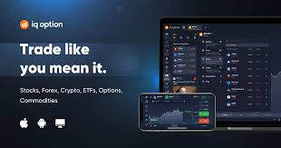 Forex Stocks Etfs Options Trading Iq Option