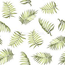 Topical Pattern Adorable Topical Palm Leaves Pattern Stock Vector Illustration Of Flora