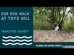 Dog Walking Chart Dog Walking Toys Hill Brasted Chart Walk No2
