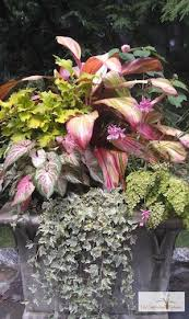 Small Picture Container Garden Design Services Container Gardening Ideas