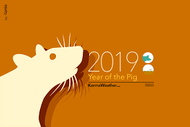Rat 2019 Chinese Horoscope - Year of the Rat's 2019 predictions