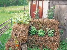 straw bale gardening may be the perfect answer for greening up your balcony