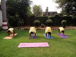 sivananda yoga center moradabad