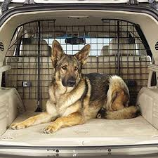 Top 10 Best Dog Car Barriers in 2017 Reviews Top 10 Review