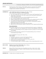 Sales And Marketing Assistant Resume Resume Template