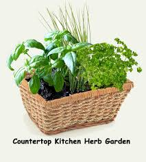 Herb Kitchen Garden Kit Herb Kitchen Garden Kit Everything Needed For Indoor Growing