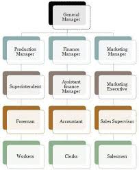 Difference Between Line And Line Staff Organization With