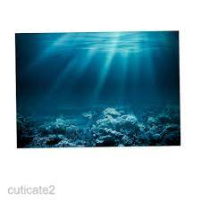 PVC Aquarium Background Poster 3D Fish ...