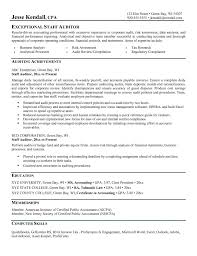 Sample Auditor Resume Objectives Sidemcicek Com Internal Bank Sa Sevte
