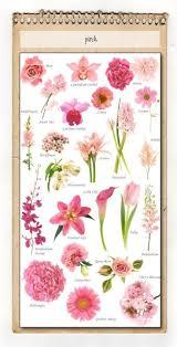 Flower Species Chart Wedding Flowers Flower Identification Guide Wedding