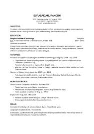 Examples Of Online Resumes Examples Of Resumes