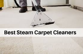 best carpet steam cleaners 2020