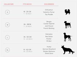 Dog Color Chart Leather Studded Dog Collar Premium Quality Black Brown Color