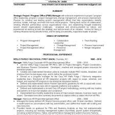 It Project Manager Resume Correctional Treatment Specialist Sample
